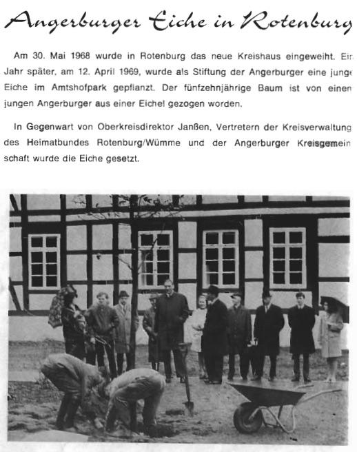 Angerburger Eiche in Rotenburg